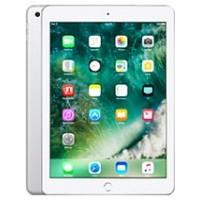 iPad 9.7 (2017) (2018)