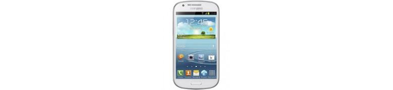 Galaxy Express i8730
